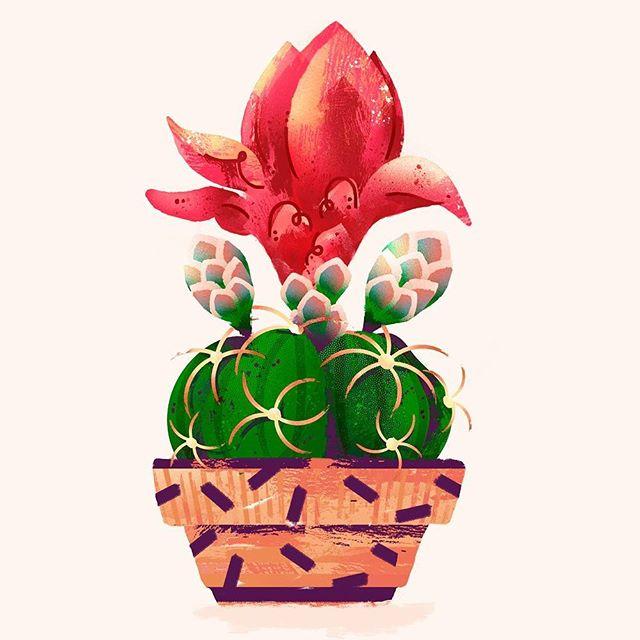Florzinha da meu cactus que durou só um dia. . . . . . . . #illustration #illustratedladies #botanicalillustration #womenwithpencils #womenwhodraw #plants #ilustragram