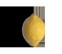 GRAPHIC-Lemon.png