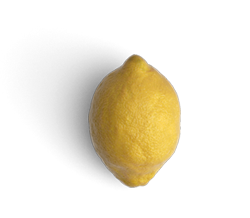 GRAPHIC-Lemon.png
