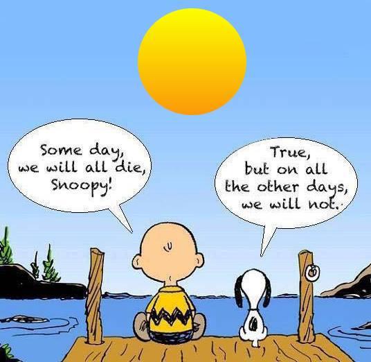 Snoopy's homespun wisdom makes a lot of sense