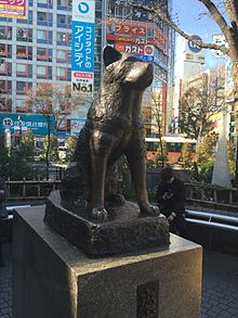 HACHIKŌ, THE LOYAL   JAPANESE AKITA COMMEMORATED IN TOKYO
