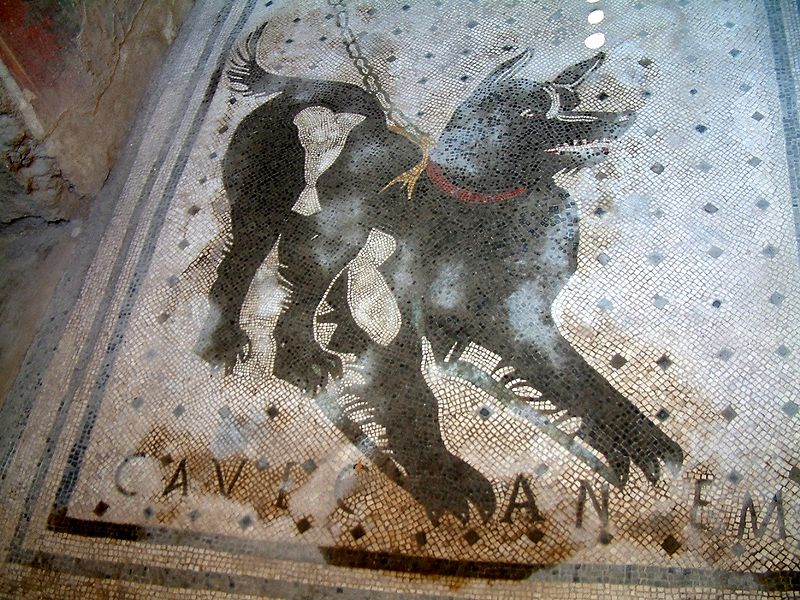 AN EARLY AND ELABORATE 'BEWARE OF THE DOG' SIGN. The    Cave canem   mosaic is found at 'the House of the Tragic Poet' from a 2nd century BC Roman house ruins in Pompeii