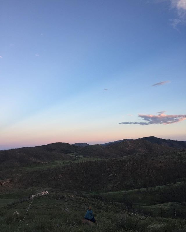 Watching the sunset from the top of our land #tinyhouse #tiny #tinypeopleinbigplaces #nofilter #noco #colorado #sunset #mountains #fortcollins #thow #tinyhouseadventures #tinyhousemovement