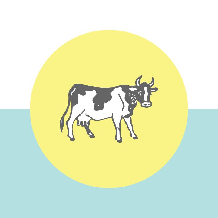 b-milk.jpg