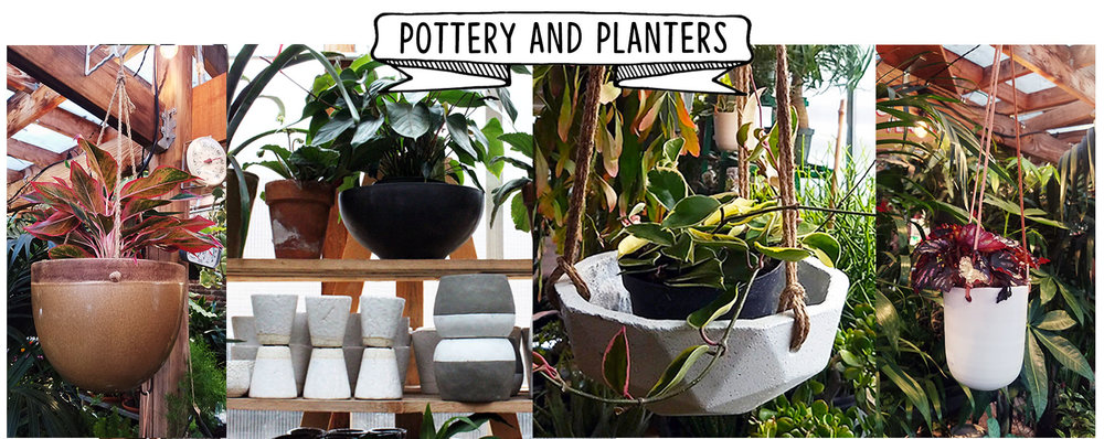 pottery and planters website.jpg