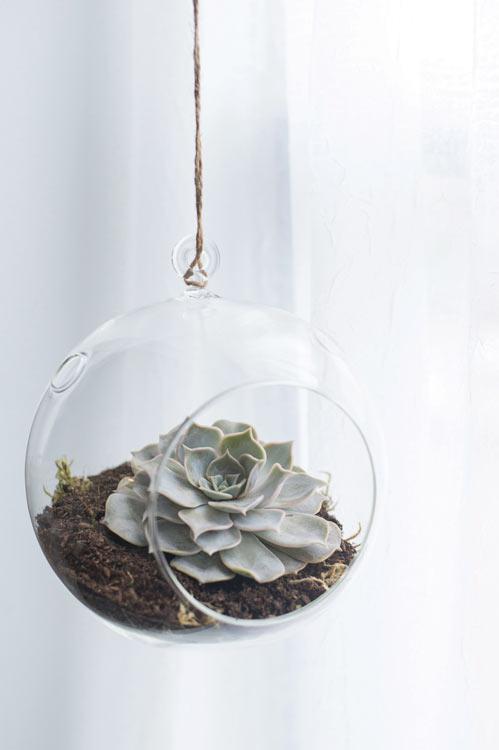 Round Hanging Terrariums