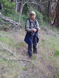 Sharon explains the medicinal uses of a native plant