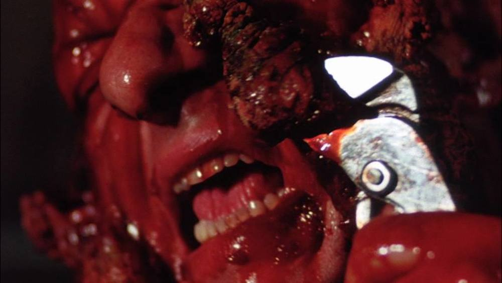 SHiVERS (THEY CAME FROM BENEATH) (ORGY OF THE BLOOD PARASiTES) (THE PARASiTE MURDERS), 1977