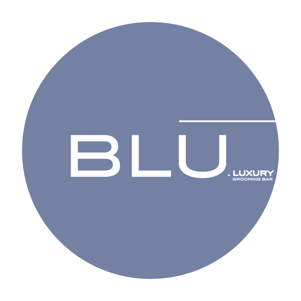BluLux_Logo.PNG