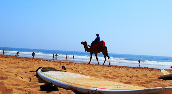 #ZENMOROCCO   Surf, Yoga, Repeat   TAGHAZOUT        ESSAOUIRA