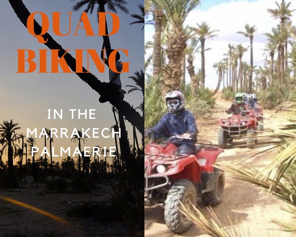QUAD BIKING IN THE PALMAERIE