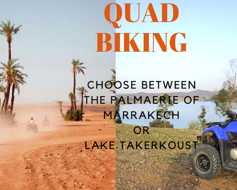QUAD BIKING IN THE MARRAKECH PALMAERIE