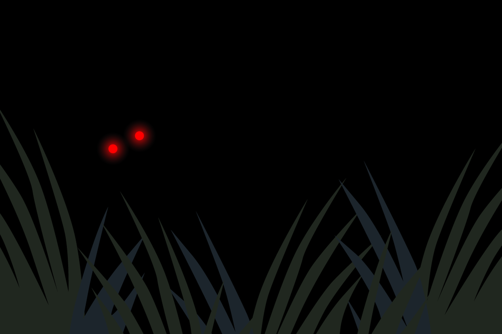 swamp8_19_2.png