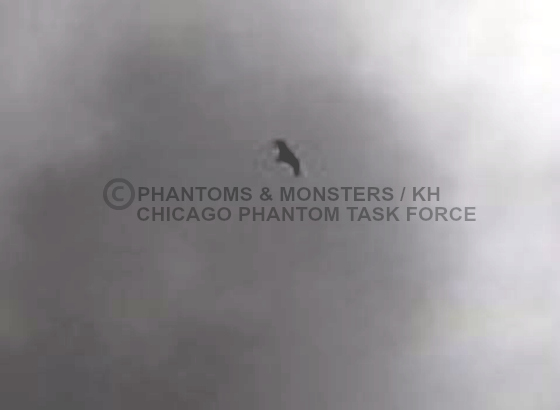 "The ""bat-like"" flying creature over Morgan Park."