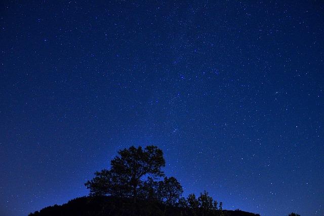 night-976900_640.jpg