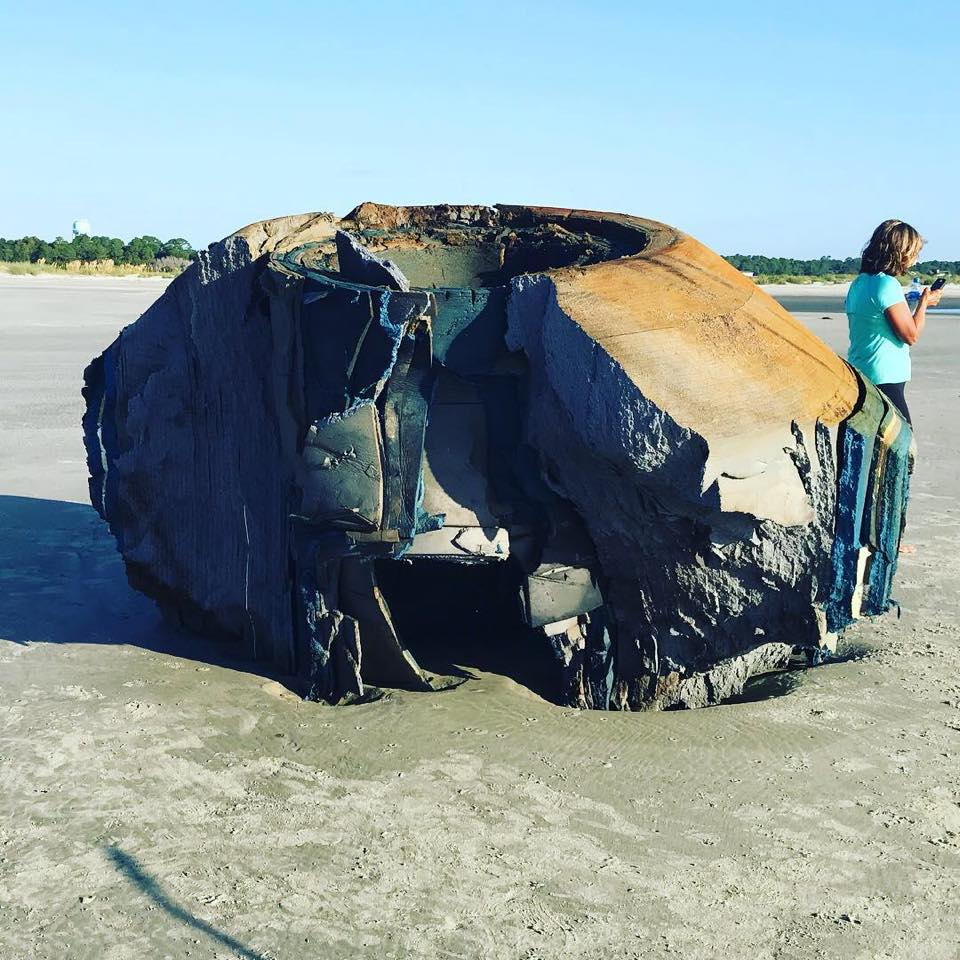 The object appears to be made of layered foam.  (Image credit: Lowcountry Marine Mammal Network/Facebook)