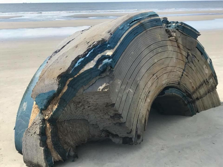 What appears to be the other half of the object.  (Image credit: Lowcountry Marine Mammal Network/Facebook)