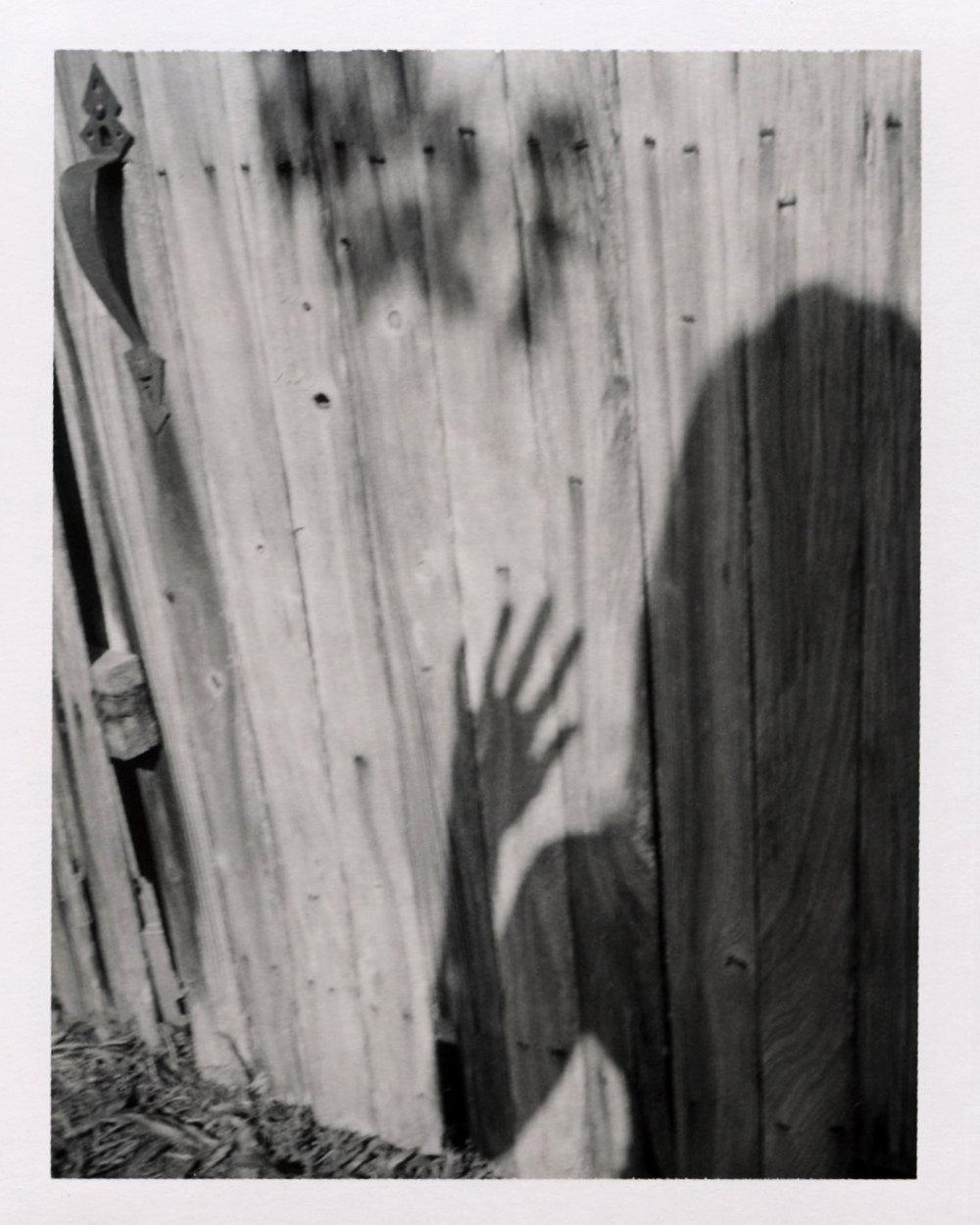 shadowplays.jpg
