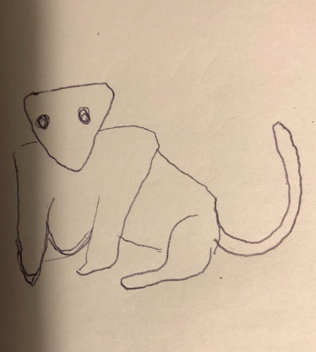 A sketch of the animal provided by the witness.