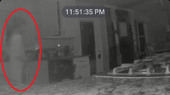 The image captured on Jennifer Hodge's home security camera, with the suspected ghost circled in red.  (Image credit: Jennifer Hodge/Facebook)