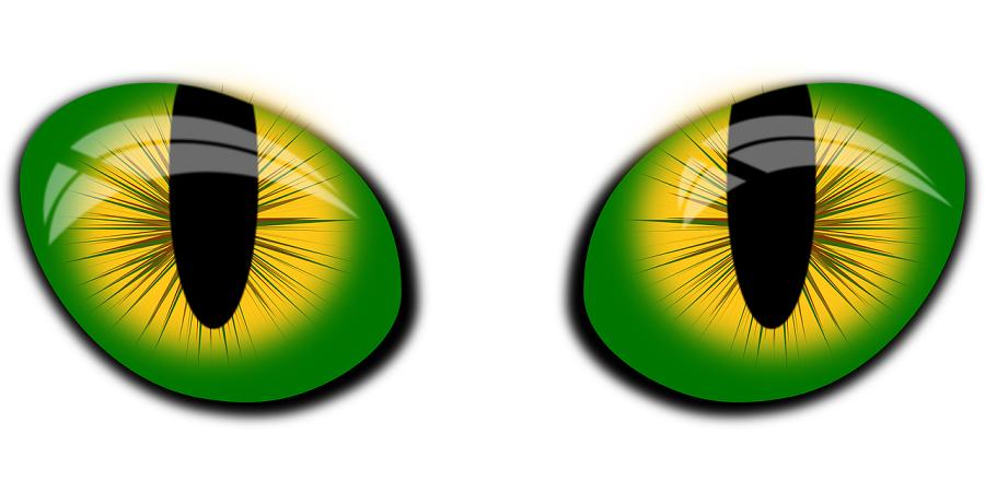 eyes-vector-1639322_1280.png