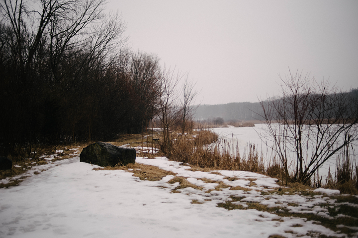 The view from the end of the driveway.  (Emily Wayland / Singular Fortean Society)