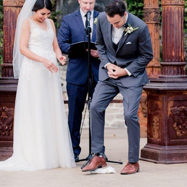 Mazel tov to Lauren & Brandon! We just got the photos and they are GORG! @jessicamangia_photography⠀ #socalweddings #justmarried #westlakevillage #losangelesweddingplanner #coordinatedbydetailed #brideandgroom #weddingceremony #losangeleswedding #malibu #jewishwedding