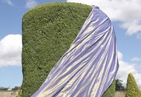 Imperial Silks | James Hare Silks