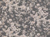 Tiami Grey Seal 7805/03