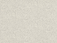 7789/02 Kaiko Pigeon
