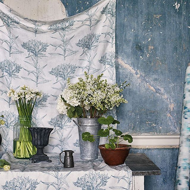 With private access to Alfred John Wise's extensive archive of exquisite, hand drawn sketches and paintings, Romo have created Gardenia, a charming collection of fabrics that wonderfully embody his passion for botanical illustrations. #embroidery #botanical #Fabrics #Cushions #Curtains #roman_blinds #interiors #interiors123  #madetomeasure