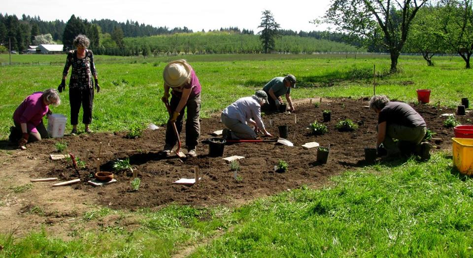 Tending the Wild:  Planting the Monarch Waystation, Sherwood, OR