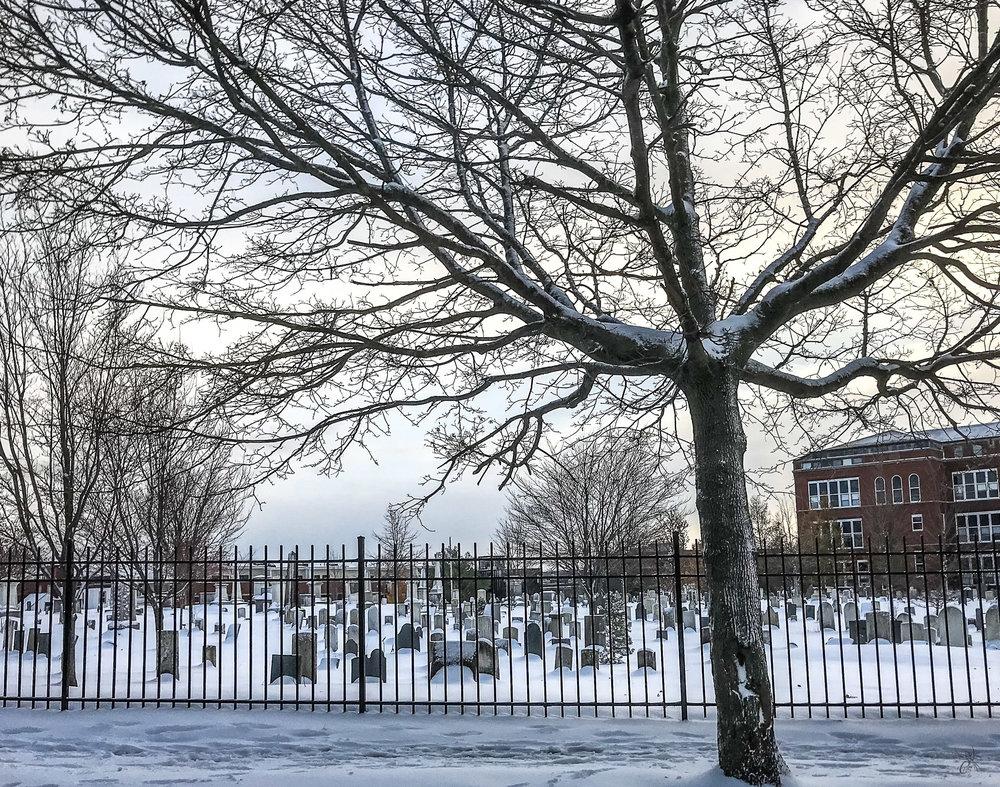 Eastern Cemetery in Snow
