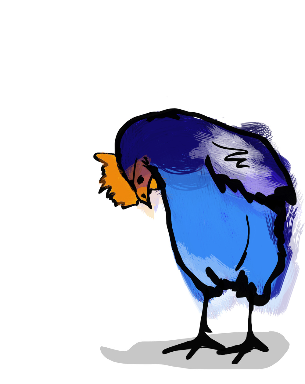 The silly argument in my first book 'I think I saw a Pukeko' is about whether a kid saw a Pukeko or a blue chicken...