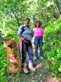 Cheryl Schleifer and Janet Gawthrop clear the trail of Algerian ivy and erharta grass in Garber Park.