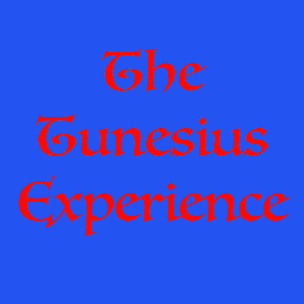 The Tunesius Experience9.jpg