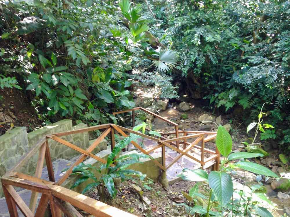 River steps_1000.jpg