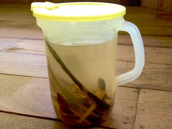 Plant drink
