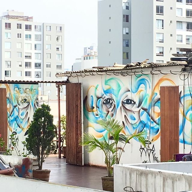 Lima rooftop, seen this morning during our brief visit to the urban jungle. #lima #urbanjungle #ayahuasca #shamanism #twoworlds #citynature