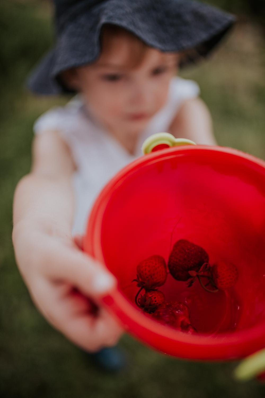 strawberry-7369.jpg
