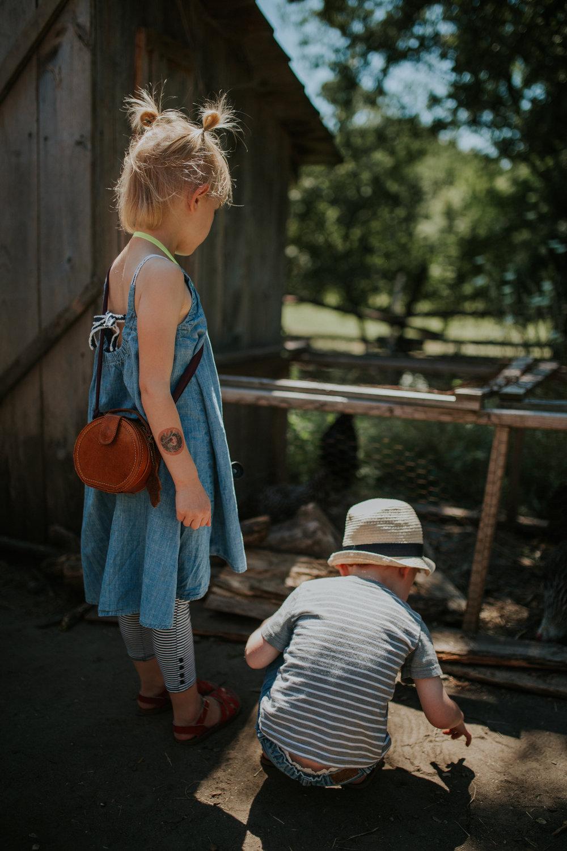 Living History Farm-3906.jpg