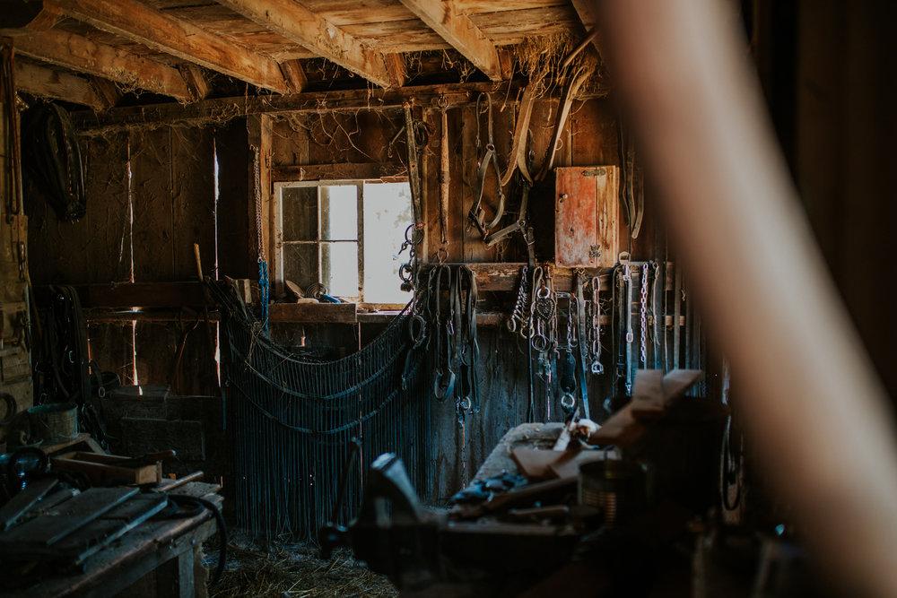 Living History Farm-3976.jpg