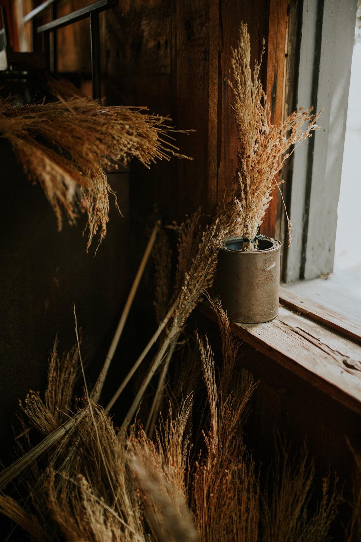 Living History Farm-4102.jpg