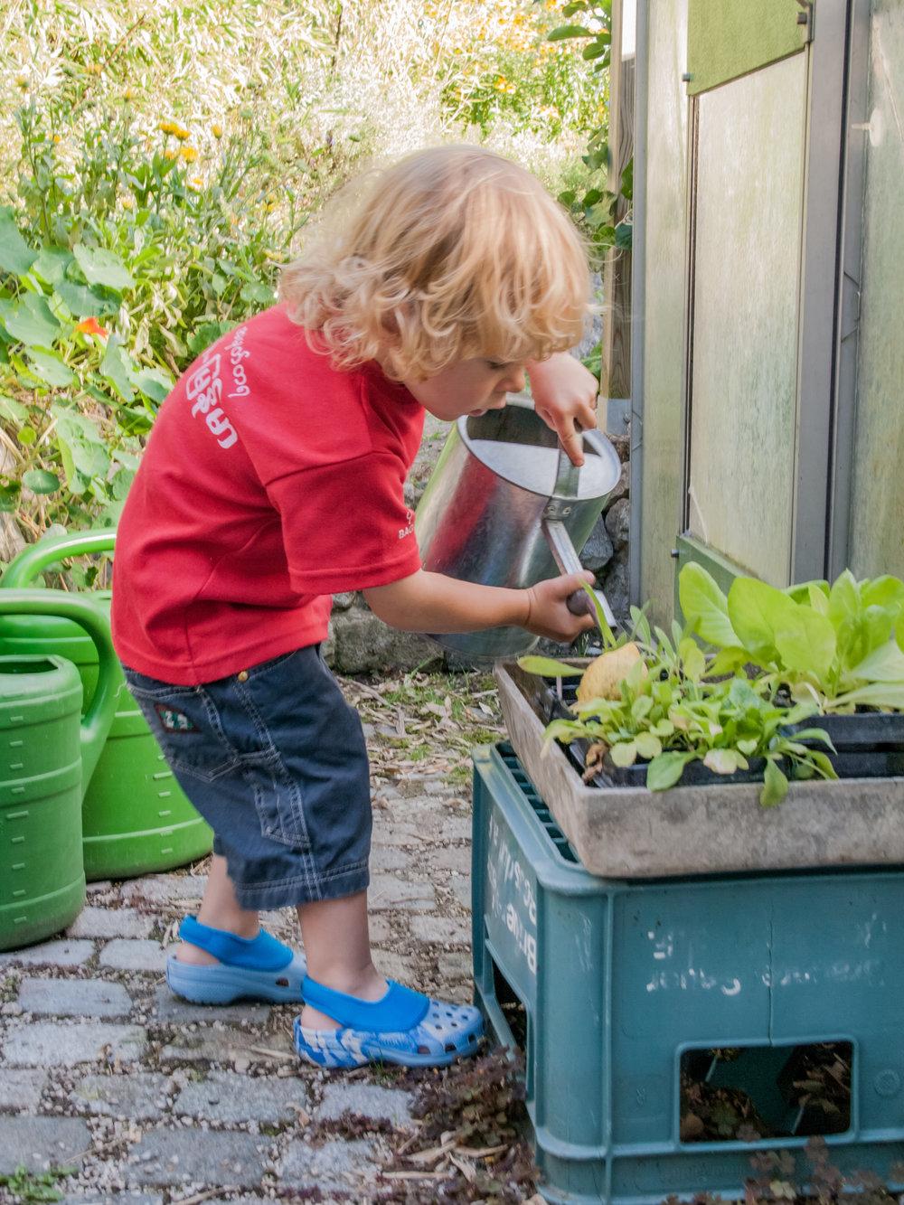 watering the garden.jpg