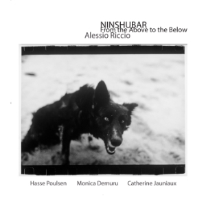 NINSHUBAR_From The Above To The Below  - Alessio Riccio with Hasse Poulsen, Monica Demuru and Catherine Jauniaux (Unorthodox Recordings, UNHX011CD - 2013)