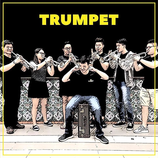 When you're late for section photo and everyone else is all set. This is how the trumpet section show their love to their youngest member 🙆🏻 #SGO2017 #aiwe #audioimagewindensemble #siglapsouthcc #music #love #anime #game #trumpetsection #trumpeter #trumpet