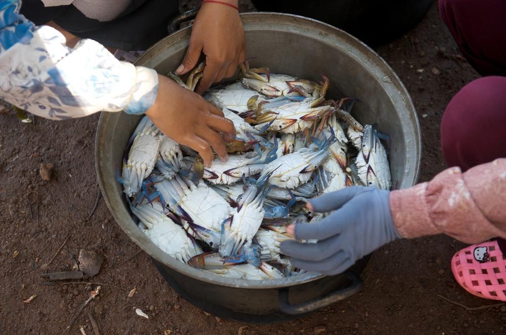 2009_0725 Kep Cambodia_3964 copy copy.jpg