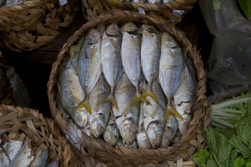 2011_0710 Cambodia_ 5666 copy copy.jpg