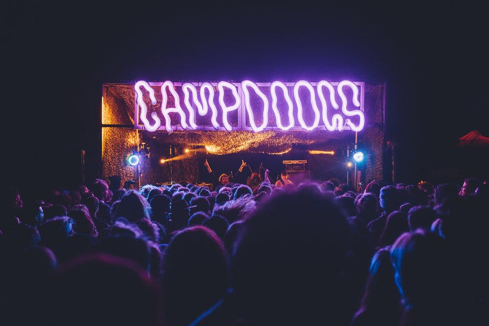 Camp Doogs (photos by Rachael Barrett)-2071.jpg