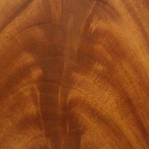 Mahogany Curl